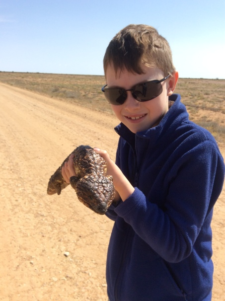 Lochie with Shingleback and a Shingleback