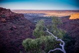 Kings Canyon Sunrise