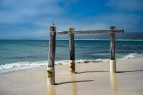 Old jetty at Hamelin Bay