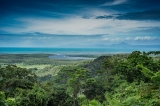 Daintree NP lookout