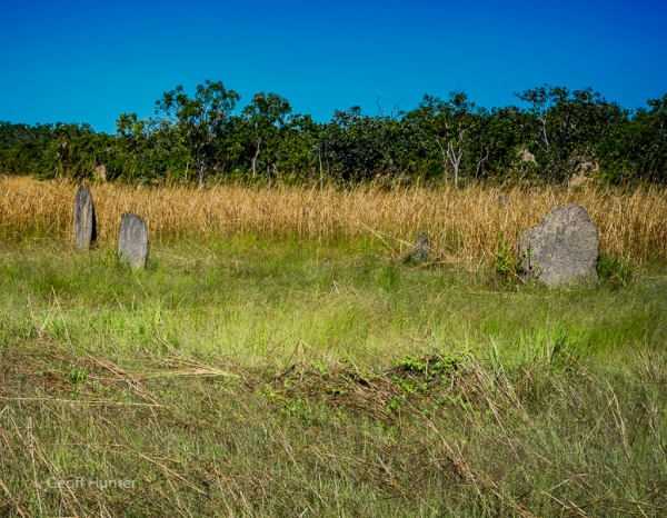 magnetic termite mounds.jpg