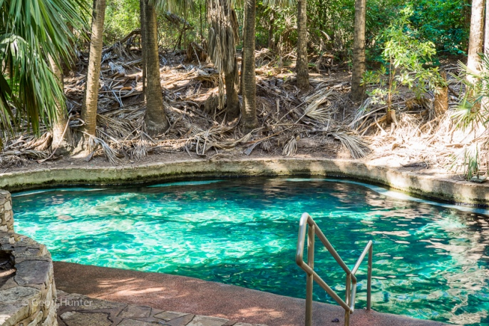 Mataranka thermal pool_