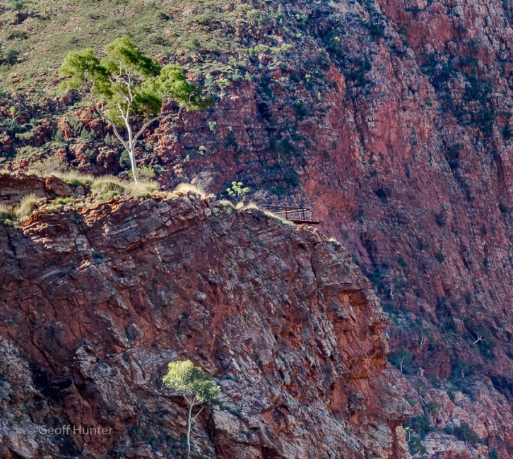 sugargum lookout above ormiston gorge
