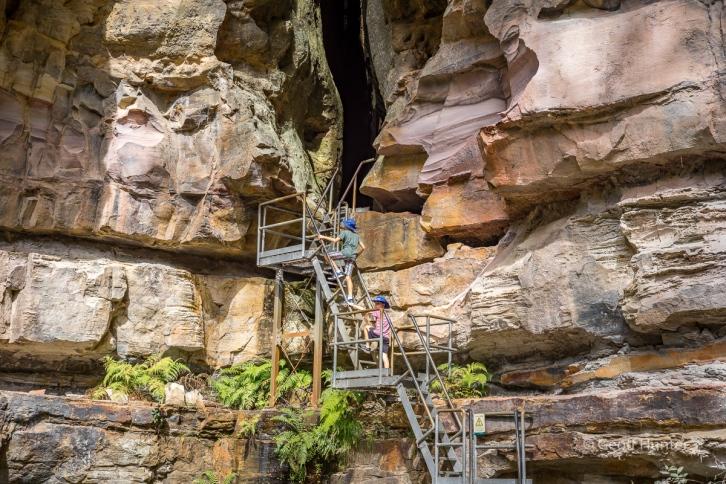 Boys climbing stairs up to ampetheatre Carnarvon Gorge_