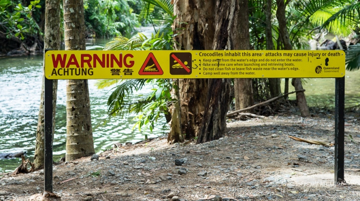 Crocodile Warning_