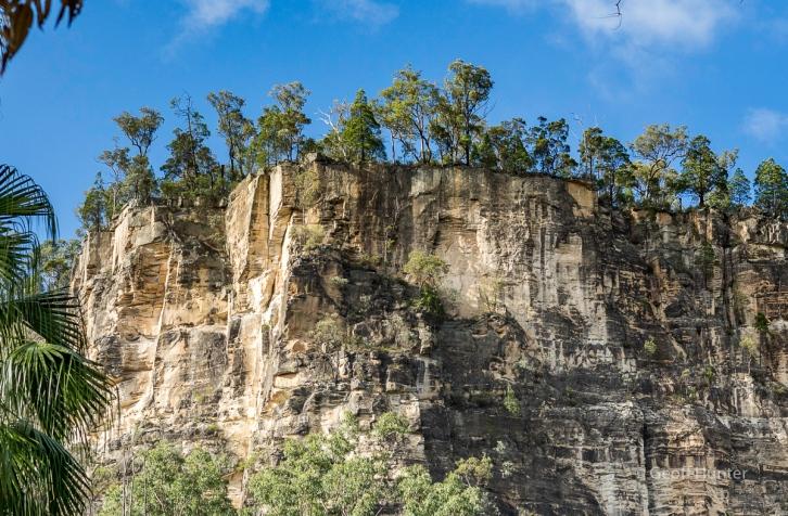 escarpment shot in Carnarvon gorge.jpg