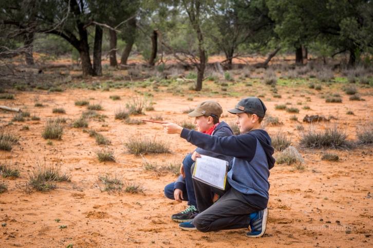 Boys talying Bird sightings