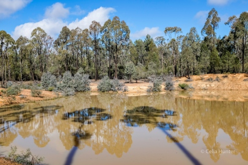 man made dams in the pilliga